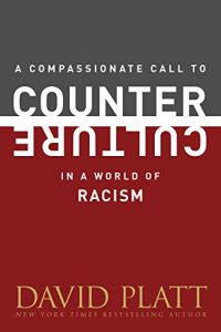 Baixar A Compassionate Call to Counter Culture in a World of Racism (Counter Culture Booklets) (English Edition) pdf, epub, eBook