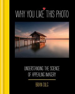 Baixar Why You Like This Photo: The science of perception, and how we understand photographs (English Edition) pdf, epub, eBook