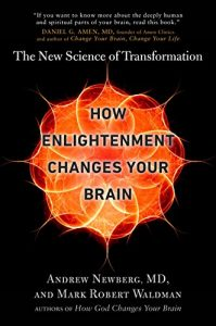 Baixar How Enlightenment Changes Your Brain: The New Science of Transformation pdf, epub, eBook