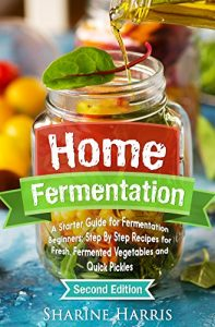 Baixar Home Fermentation: A Starter Guide for Fermentation Beginners: Step By Step Recipes for Fresh, Fermented Vegetables and Quick Pickles – 2nd Edition (DIY … Kombucha, Krauts, Kimchis) (English Edition) pdf, epub, eBook