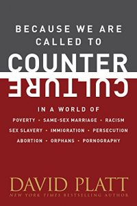 Baixar Because We Are Called to Counter Culture: In a World of Poverty, Same-Sex Marriage, Racism, Sex Slavery, Immigration, Persecution, Abortion, Orphans, and … (Counter Culture Booklets) (English Edition) pdf, epub, eBook