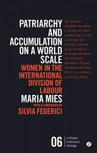 Baixar Patriarchy and Accumulation on a World Scale: Women in the International Division of Labour (Critique Influence Change) pdf, epub, eBook