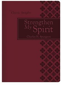 Baixar Strengthen My Spirit (Classic Insights) (English Edition) pdf, epub, eBook