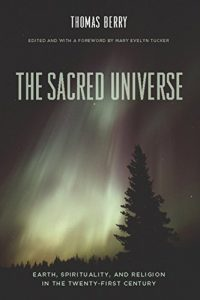 Baixar The Sacred Universe: Earth, Spirituality, and Religion in the Twenty-first Century pdf, epub, eBook