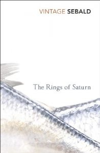 Baixar The Rings Of Saturn pdf, epub, eBook