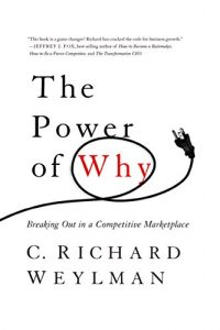 Baixar The Power of Why: Breaking Out In a Competitive Marketplace pdf, epub, eBook