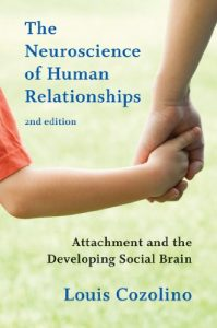 Baixar The Neuroscience of Human Relationships: Attachment and the Developing Social Brain (Second Edition) (Norton Series on Interpersonal Neurobiology) pdf, epub, eBook