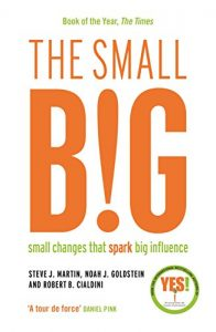 Baixar The small BIG: Small Changes that Spark Big Influence pdf, epub, eBook
