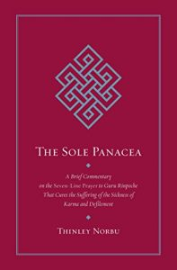 Baixar The Sole Panacea: A Brief Commentary on the Seven-Line Prayer to Guru Rinpoche That Cures the Suff ering of the Sickness of Karma and Defilement pdf, epub, eBook