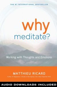 Baixar Why Meditate?: Working with Thoughts and Emotions pdf, epub, eBook