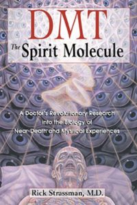 Baixar DMT: The Spirit Molecule: A Doctor's Revolutionary Research into the Biology of Near-Death and Mystical Experiences pdf, epub, eBook