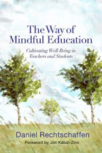Baixar The Way of Mindful Education: Cultivating Well-Being in Teachers and Students (Norton Books in Education) pdf, epub, eBook