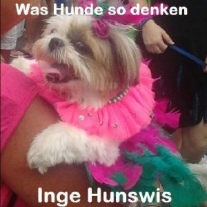 Baixar Was Hunde so denken – Ein Foto eBook (German Edition) pdf, epub, eBook