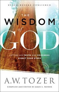 Baixar The Wisdom of God: Letting His Truth and Goodness Direct Your Steps pdf, epub, eBook
