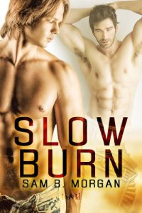 Baixar Slow Burn (English Edition) pdf, epub, eBook