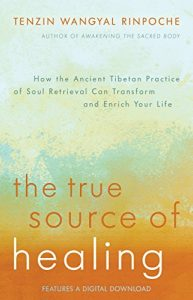 Baixar The True Source of Healing: How the Ancient Tibetan Practice of Soul Retrieval Can Transform and Enrich Your Life pdf, epub, eBook
