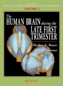 Baixar The Human Brain During the Late First Trimester: Volume 2 (Atlas of Human Central Nervous System Development) pdf, epub, eBook