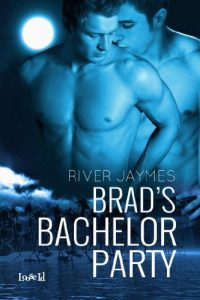 Baixar Brad's Bachelor Party (English Edition) pdf, epub, eBook