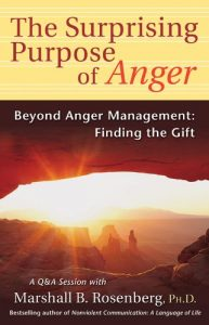 Baixar The Surprising Purpose of Anger: Beyond Anger Management: Finding the Gift (Nonviolent Communication Guides) pdf, epub, eBook