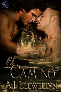 Baixar El Camino (Spanish Edition) pdf, epub, eBook