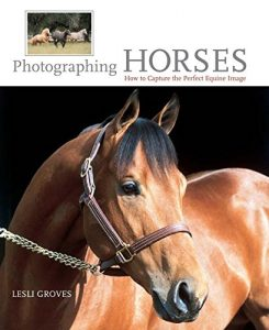 Baixar Photographing Horses: How To Capture The Perfect Equine Image pdf, epub, eBook