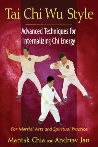 Baixar Tai Chi Wu Style: Advanced Techniques for Internalizing Chi Energy pdf, epub, eBook