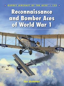 Baixar Reconnaissance and Bomber Aces of World War 1 (Aircraft of the Aces) pdf, epub, eBook