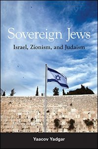 Baixar Sovereign Jews: Israel, Zionism, and Judaism pdf, epub, eBook