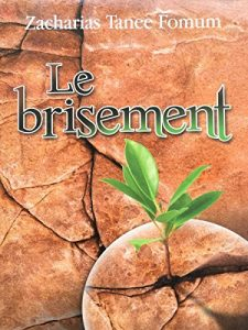 Baixar Le Brisement (Le Secret du Debordement Spirituel) (Faire du Progres Spirituel t. 5) (French Edition) pdf, epub, eBook