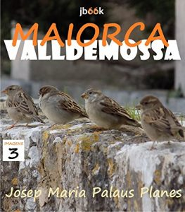Baixar MALLORCA: VALLDEMOSSA [3] (Catalan Edition) pdf, epub, eBook