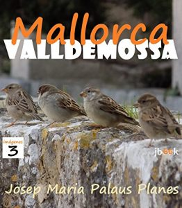 Baixar MALLORCA: VALLDEMOSSA [3] (Spanish Edition) pdf, epub, eBook